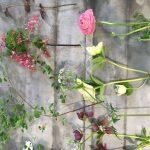 Toucher les fleurs rend heureux
