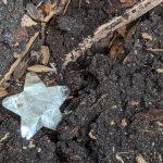 Testimonial : Vive les confettis naturels !!!